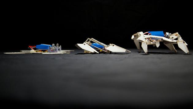 Origami-Roboter faltet sich selbst zusammen (Bild: AP)