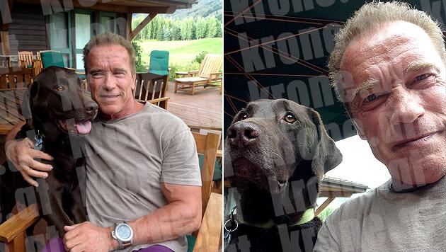 """Arnie mit Hund """"Gustav"""" (Bild: Arnold Schwarzenegger)"""