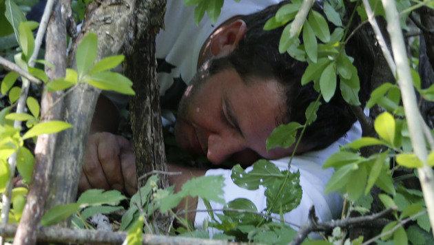 Erholsamer Schlaf unterm Blätterdach (Bild: Zwefo)