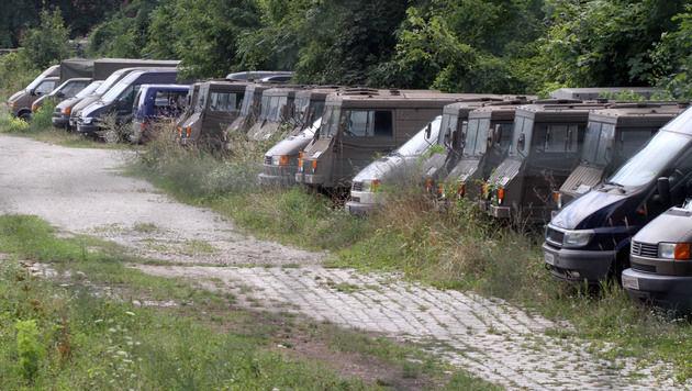 Etliche Pinzgauer lagern ebenfalls am Gelände. (Bild: ANDI SCHIEL)