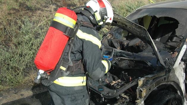 Das Fahrzeug wurde völlig zerstört. (Bild: FF Wiener Neudorf)
