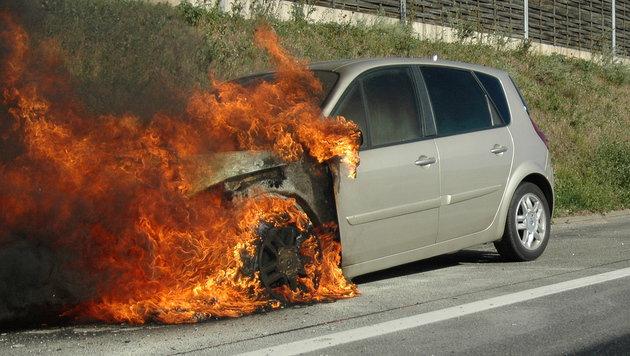 Aus dem Motorraum des Wagens schlugen Flammen. (Bild: FF Wiener Neudorf)
