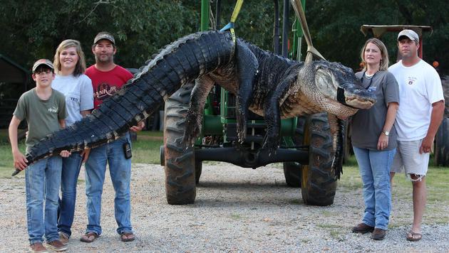 Mandy und John Stokes (re.) und Schwager Kevin Jenkins mit seinen Kindern haben den Riesen erwischt. (Bild: AP)