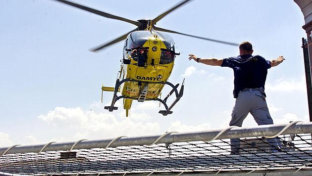 Wespen-Attacke: Mann bricht mit Atemnot zusammen (Bild: APA/SCHNEIDER Harald (Symbolbild))