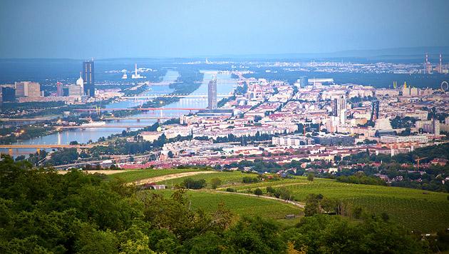 Wien: 2029 schon zwei Millionen Einwohner (Bild: thinkstockphotos.de)