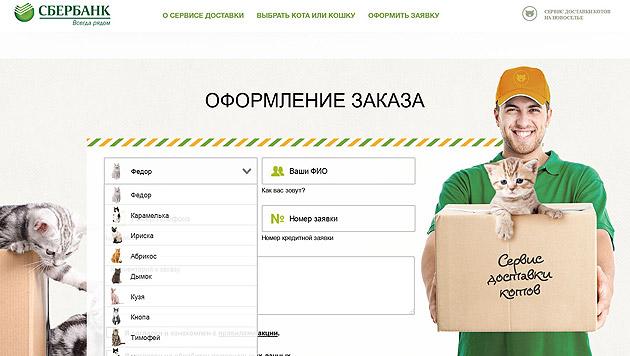 Auf der Website der russischen Sberbank kann man sich eine Katze zum Konto bestellen. (Bild: Screenshot kotoservice.ru)