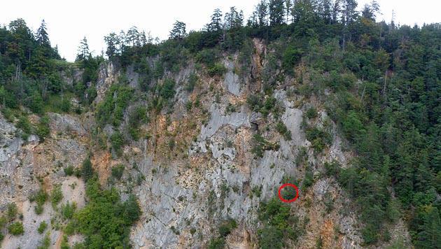 In Kärnten versuchte eine Wienerin, einen Berg mit Flipflops zu erklimmen (Kreis). (Bild: LPD Kärnten)