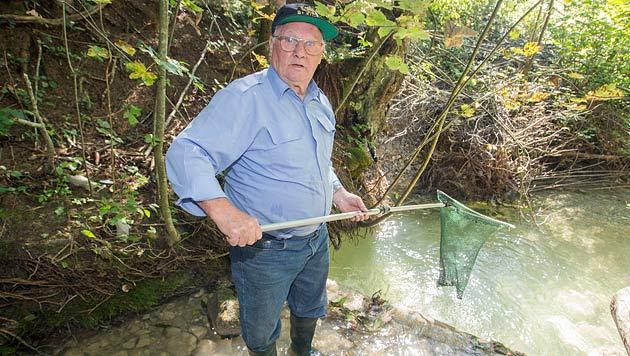 """Pensionist Franz Haider ist verzweifelt: """"Fast alle Fische sind weg."""" (Bild: Neumayr/MMV)"""