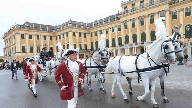 Die Pferdekutsche erreicht Schönbrunn. (Bild: Starpix/Alexander TUMA)