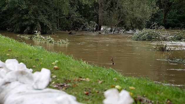 Im Bild die Kainach in der Südsteiermark (Bild: APA/ERWIN SCHERIAU)