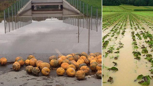 Von den Wassermassen zerstörte Felder im Raum Preding/Wettmannstätten und Ottendorf (Bild: APA/LANDWIRTSCHAFTSKAMMER STEIERMARK)