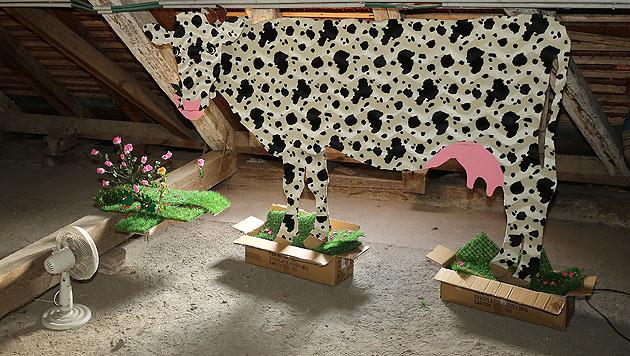Was macht die Kuh im MQ? (Bild: © TimTom)