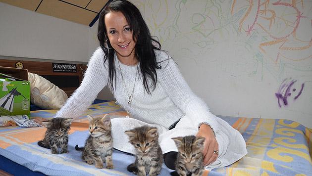 Nina Stern nahm sich der Kätzchen an. (Bild: Christian Schulter)