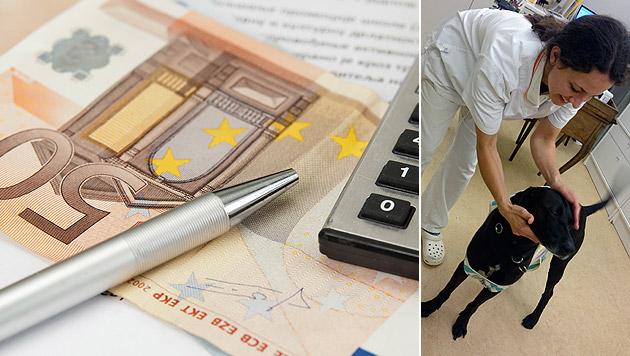 Tierärztin half trotz Geldnot der Hundehalterin (Bild: thinkstockphotos.de, Privat)