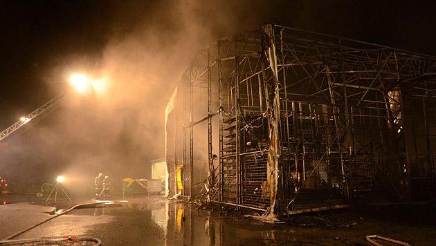 Hunderte gelagerte Reifen gingen in Flammen auf. (Bild: Einsatzdoku.at)