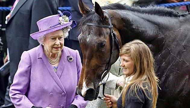 Rennpferd von Queen wegen Dopings disqualifiziert (Bild: TAL COHEN / EPA / picturedesk.com)