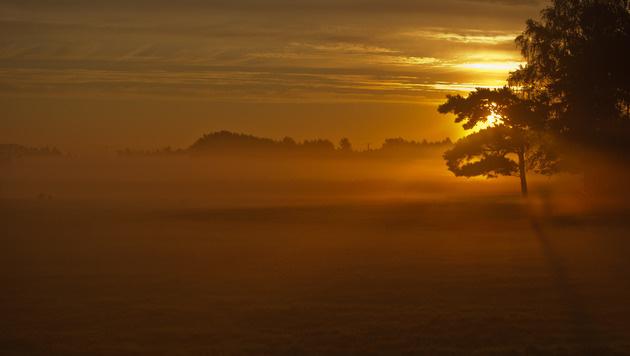 Ruhiges Herbstwetter bringt Nebel und Sonne (Bild: APA/dpa)