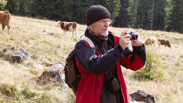 Bärenanwalt Georg Rauer suchte am Ort des Tierangriffs nach Spuren - bisher aber ohne Erfolg. (Bild: APA/NEUMAYR/PROBST)
