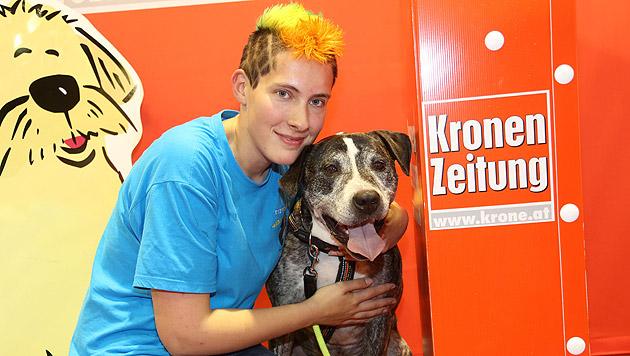 """Der """"Hund des Jahres 2014"""" mit Halterin Stephanie Planegger (Bild: Uta Rojsek-Wiedergut)"""