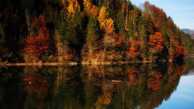 Goldenes Herbstwetter auch in der kommenden Woche (Bild: APA/BARBARA GINDL)