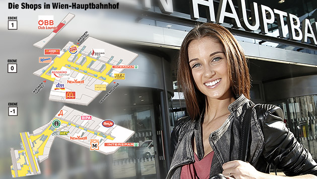 Alle Infos und Gebäudeplan zum neuen Hauptbahnhof (Bild: Reinhard Holl, krone.at-Grafik)