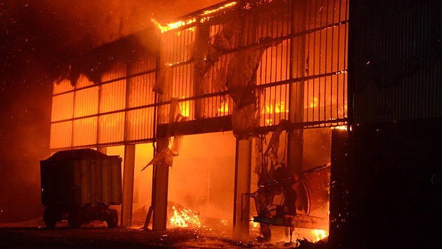 Der Stall ist ein Raub der Flammen geworden. 1.600 Schafe konnten nicht gerettet werden. (Bild: Einsatzdoku.at)