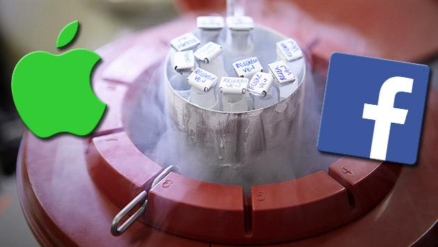 Apple & Facebook zahlen Einfrieren von Eizellen (Bild: thinkstockphotos.de, apple.com, facebook.com)