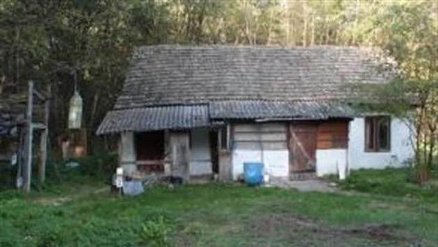 """In dieser Waldhütte in Ungarn wurde der 67-Jährige über einen Monat lang festgehalten. (Bild: """"Krone"""")"""