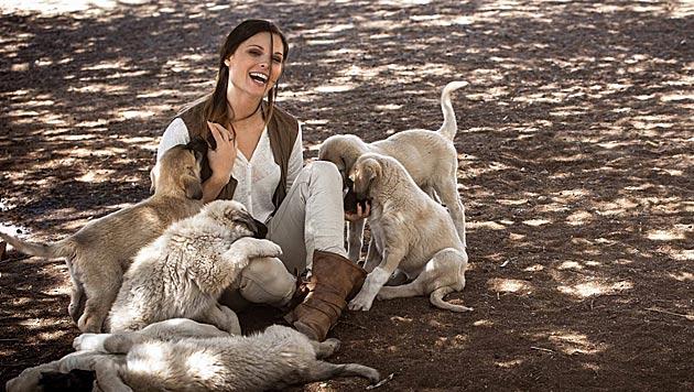 Süß! Diese Hundewelpen fühlen sich bei Anna Fenninger pudelwohl. (Bild: facebook.com/Anna Fenninger)