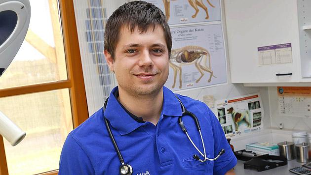 Veterinär Dominik Berghamer von der Tierklinik Seekirchen (Bild: Markus Tschepp)