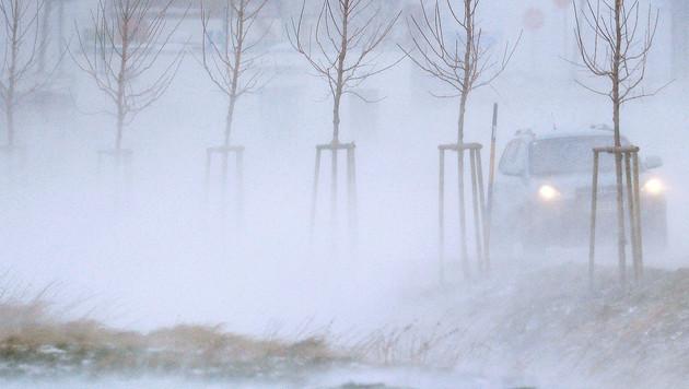 Sturmböen bis zu 100 km/h fegen über Österreich (Bild: APA/ROBERT JAEGER)