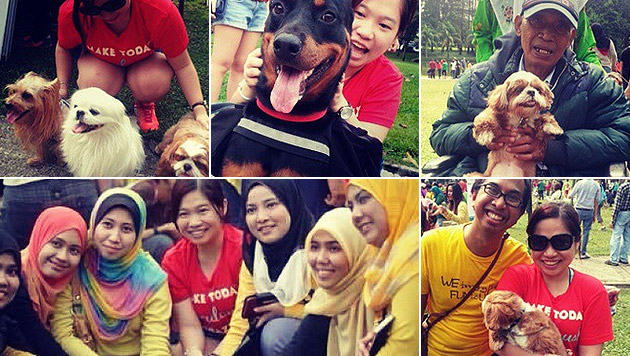 Malaysia: Streichelaktion erzürnt Religionswächter (Bild: instagram.com/jolene_chan)