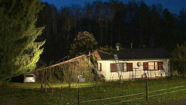 Im steirischen Ort Bleiberg stürzten zwei Bäume auf ein Wohngebäude. (Bild: APA/BFV LIEZEN/SCHLÜSSLMAYR)