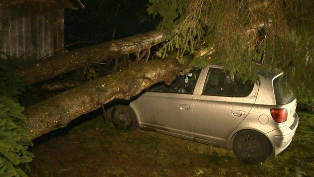 In Bleiberg (Irdning) im Ennstal stürzten durch den Sturm in der Nacht zwei Bäume auf einen Pkw. (Bild: APA/BFV LIEZEN/SCHLÜSSLMAYR)