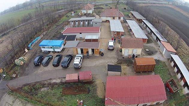 Der Verein errichtet derzeit ein Tierheim in Ungarn. (Bild: Hope for Buksi)