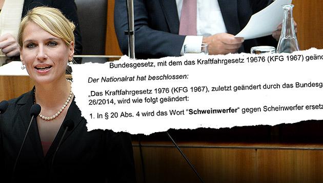 Team-Stronach-Klubobfrau Kathrin Nachbaur (Bild: APA/ROLAND SCHLAGER, parlament.gv.at)