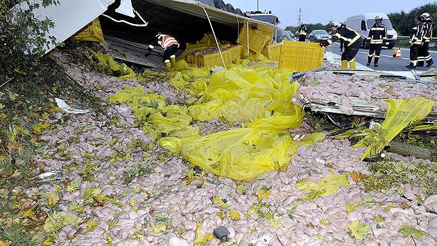 20 Tonnen Putenfleisch lagen nach dem Unfall auf der A1 verstreut. (Bild: APA/PAUL PLUTSCH)