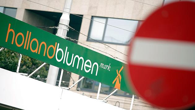 Holland Blumen Mark: Letzte Chance für Blumenkette (Bild: APA/GEORG HOCHMUTH)
