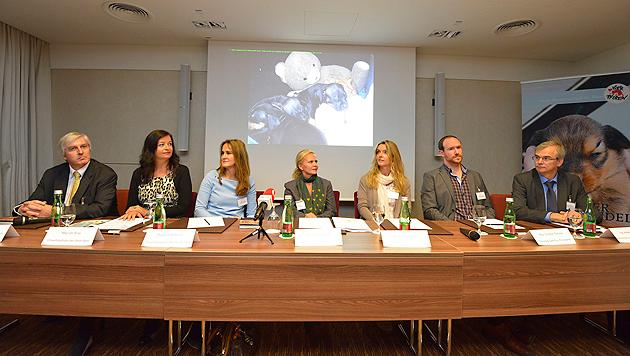 Experten diskutierten in Wien über den illegalen Welpenhandel. (Bild: Kromus)