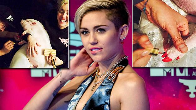 "Miley Cyrus"" Schweinderl-Pediküre sorgt für Ärger (Bild: APA/EPA/ANP FILE/Robin van Lonkhuijsen, instagram.com/mileycyrus)"