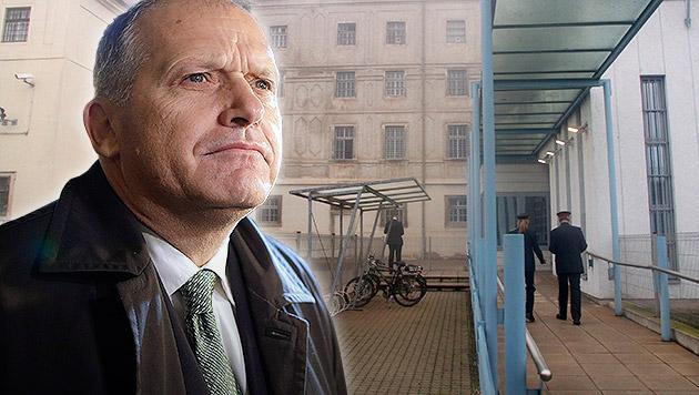Ex-Innenminister Strasser ist wieder freier Mann (Bild: Andi Schiel, APA/Georg Hochmuth, krone.at-Grafik)