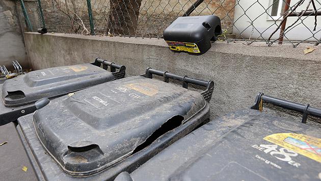 Die Müllcontainer müssen ständig getauscht werden, weil Ratten sie zerbeißen. (Bild: Klemens Groh)