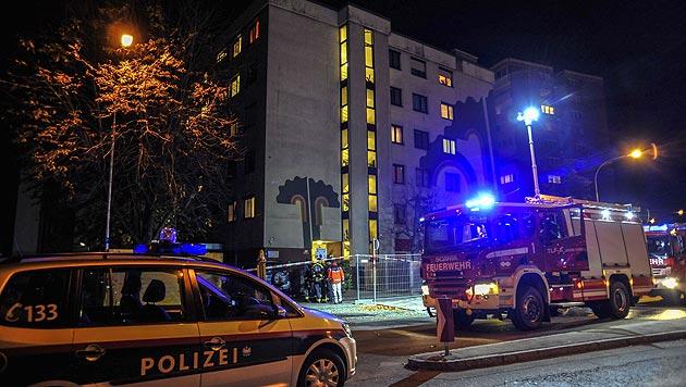 Mordopfer bei Brand entdeckt: Täter (44) gefasst (Bild: APA/ZEITUNGSFOTO.AT/DANIEL LIEBL)
