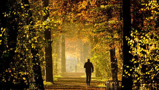 November bleibt weiterhin ungewöhnlich warm (Bild: APA/dpa/UNBEKANNT)