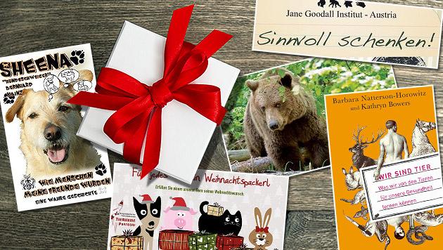Sinnvolle Weihnachtsgeschenke für den Tierschutz (Bild: Kainz, Knaus Verlag, 4 Pfoten, Goodall Inst., Tierheim Parndorf)