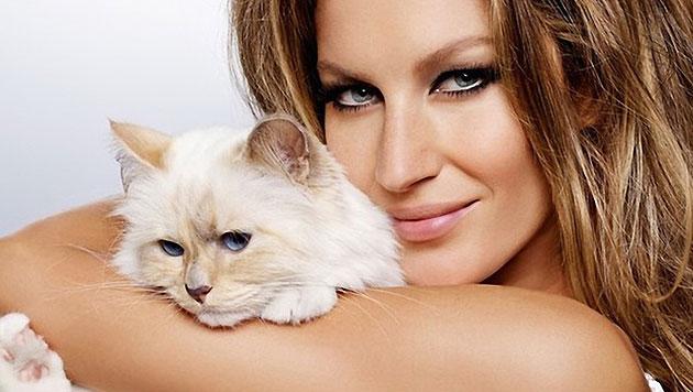 Karl Lagerfelds Katze kuschelt nur mit den höchstbezahlten Models - hier mit Gisele Bündchen. (Bild: Viennareport)