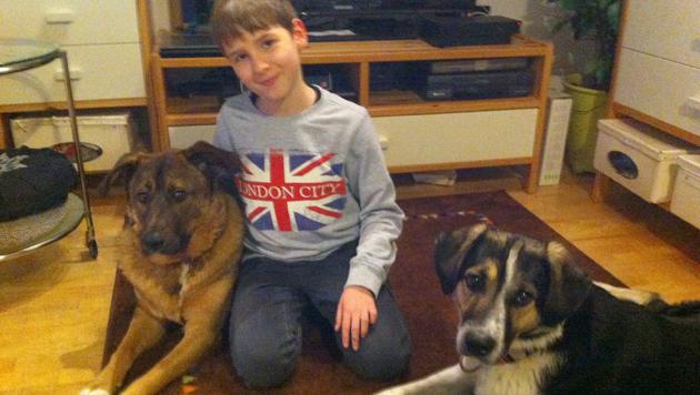 Sohn Nico mit den beiden Familienhunden. (Bild: privat)