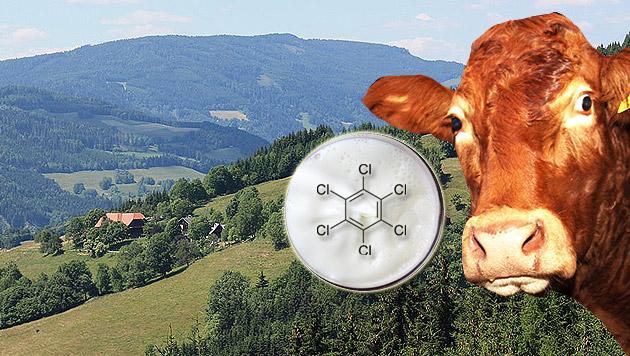 Kärnten: Krebserregendes Gift in Milch gefunden (Bild: Mefusbren69, dpa/Roland Weihrauch, wikipedia.org, J. Radspieler)