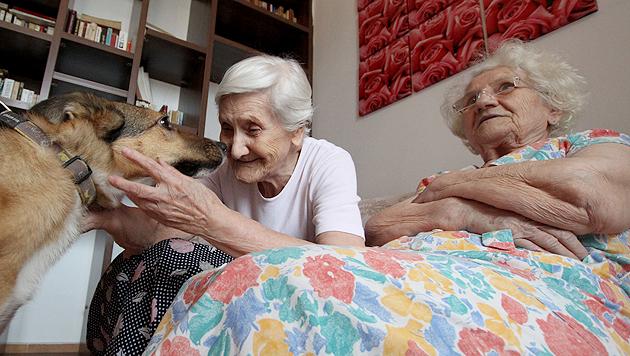 Streuner sorgen bei Senioren für mehr Lebensfreude (Bild: Vier Pfoten)