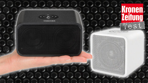 Bluetooth-Lautsprecher von Toshiba im Test (Bild: Toshiba, krone.at-Grafik)